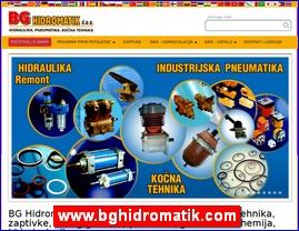 www.bghidromatik.com