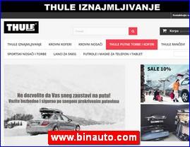 www.binauto.com