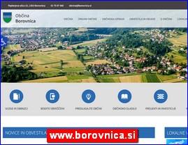www.borovnica.si