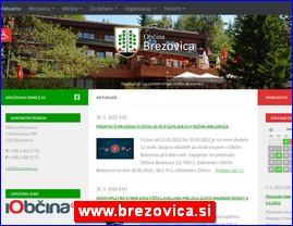 www.brezovica.si