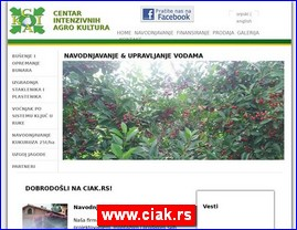 www.ciak.rs