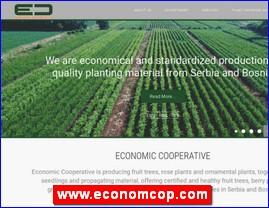 www.economcop.com