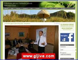 www.gljive.com