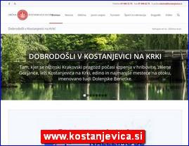 www.kostanjevica.si