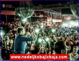 www.nedeljkobajicbaja.com