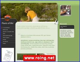 www.roing.net
