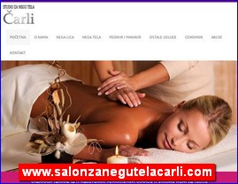 www.salonzanegutelacarli.com