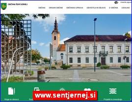 www.sentjernej.si