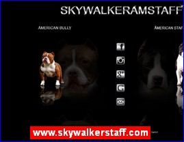 www.skywalkerstaff.com