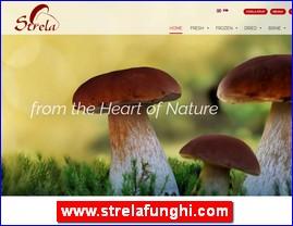 www.strelafunghi.com